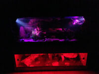 5ft fish tank with 5ft Vivarium stand may split