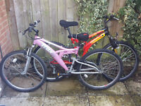 Male & Female bicycle - cheap