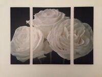 Large 3 piece canvas