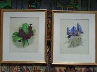 Attractive antique framed botanical (2) and butterfly prints(3) prints, gold framed mounted on card