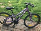 Bicycle Specialized Hotrock