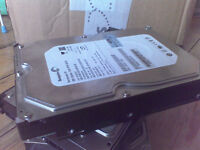 Seagate Barracuda 250GB 7200rpm Hard Drives