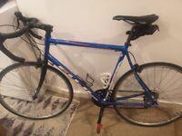 Road bike Fuji Newest 3.0