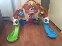 Fisher Price Play centre arch, laying or sitting