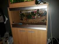 3 foot Viv with built in cabinet , 2doors, plenty of storage