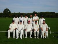 Players needed for cricket team in South East London North West Kent