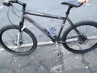 Specialized rock hopper