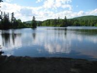 Chalet maison Lac a moteur rivière 15 mns de St Sauveur,Trembant