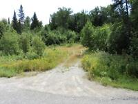 40 Acres with Small Cabin north of Searchmont