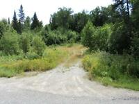 Bush lot with small cabin in Wabos