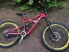Specialised Enduro Mountain Bike