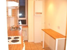 Excellent Condition Flat for Sale. Walking distance from Paisley University.