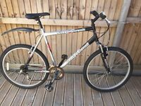 Professional Mens Mountain Bike cheap