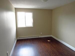 Quiet West-End Guelph 1 Bedroom Apartment for Rent w/ Balcony