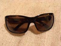 Serengeti Vittoria 7313 shiny tortoise sun glasses