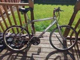 Used bicycle for sale