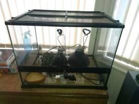 Reptiles tank