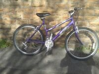 Raleigh VIXEN Ladies Bike in Very good condition