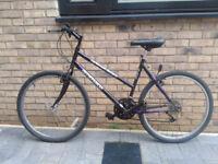 Vintage Ammaco 18-Speed Size-18 Ladies Bike in Perfect Order