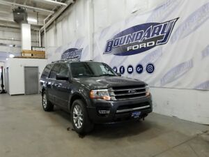 2016 Ford Expedition Limited W/ Leather, Sunroof, Ecoboost, 4WD