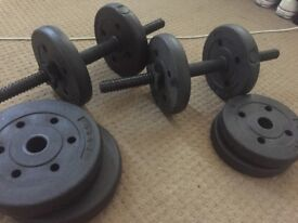 2 Dunbell weights with extra weights