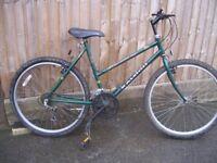 Ladies Raleigh Genesis Special Edition bicycle.