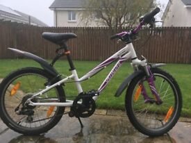 Girls 20 inch Mountain Bike (6 gears)