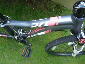 CANNONDALE TRAIL 24 JUNIOR BIKE EXCELLENT CONDITION (frog/Islabike)
