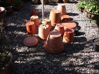 Plant pots and saucers