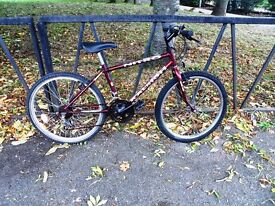 "24"" Wheel RALEIGH Mountain Bike For Sale. Fully Serviced & Ready To Ride. Guaranteed. 15"" Frame"