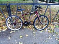 """24"""" Wheel RALEIGH Mountain Bike For Sale. Fully Serviced & Ready To Ride. Guaranteed. 15"""" Frame"""