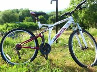 Mountain bike £18