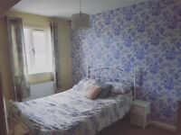 Lovely furnished double room to rent *bills included*