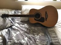 Left hand acoustic guitar with case