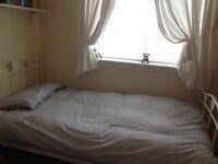 Next single bed frame