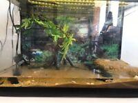 Fish Tank - 65 Litres