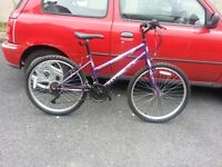 Maxima girls Bike with 24 inch wheel