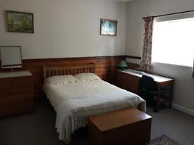 Room to rent!