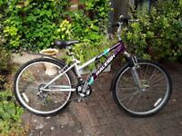 "Ladies 26"" bicycle"