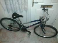 Ladies mountain bike (very tidy)