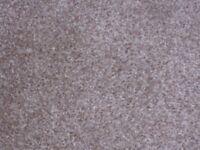 StainGuard Harvest Heathers oatmeal 33 carpet for Christmas ?