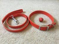 Festive Red Leather Dog Collar & Lead