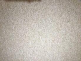 Carpet off-cut, light beige