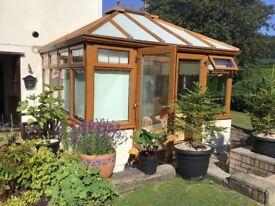 Conservatory Double Glazed Light Oak
