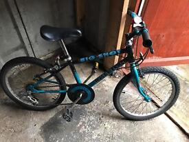Unisex Raleigh bike