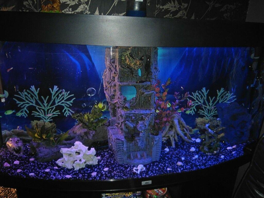 260litre jewel bow front 4 ft tank with full spectrum leds external filter job lot