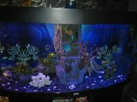 260litre jewel bow front 4 ft tank with full spectrum leds external filter job lot