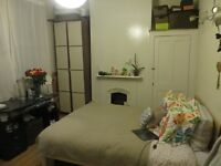 Lovely bright double room in friendly shared house, near bounds green station