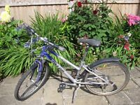 Girl's Silver and Purple Bicycle