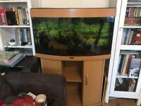 Fish tank with accessories. Juwel Vision 180 Aquarium and Cabinet. Large aquarium
